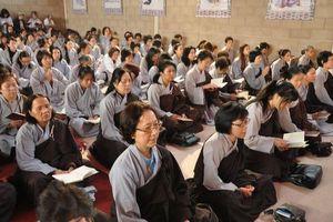 Phật tử đắp y nâu không điều được không?