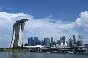 Doanh nghiệp vừa, nhỏ Singapore kém lạc quan về viễn cảnh kinh doanh