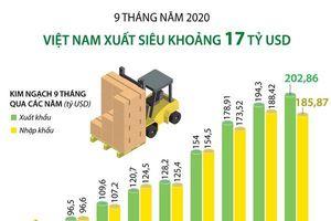 Việt Nam xuất siêu khoảng 17 tỷ USD trong 9 tháng qua