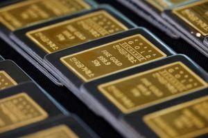 Giá vàng trong nước bật tăng phi mã