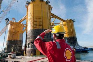 Shell cắt giảm tới 9.000 việc làm do khủng hoảng giá dầu