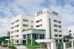 REE khởi động tái cấu trúc, chuyển quyền sở hữu cổ phiếu sang các công ty con