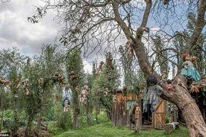 Đảo Búp bê 'ma quái' với những câu chuyện đầy ám ảnh