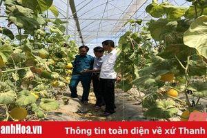 Nâng cao chất lượng sinh hoạt chi bộ thôn, tiểu khu ở Đảng bộ huyện Nga Sơn
