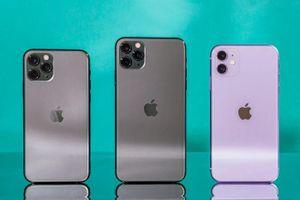 iPhone 12 chưa ra mắt, giới phân tích đã nói về tính năng của iPhone 13