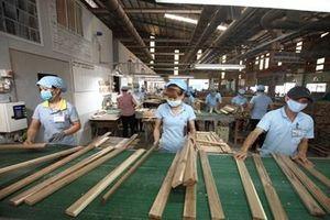 Xuất khẩu gỗ và sản phẩm gỗ kỳ vọng đạt trên 12 tỷ USD trong năm 2020