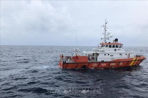 Kịp thời cứu nạn 11 ngư dân bị chìm tàu ở cửa biển Quy Nhơn