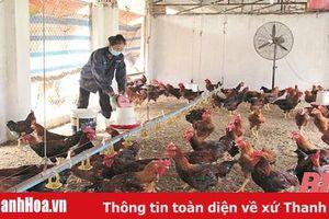 Chuyển đổi phương thức sản xuất trong chăn nuôi
