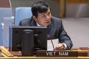 Việt Nam và Indonesia kêu gọi tiếp cận toàn diện trong giải quyết các thách thức về an ninh, nhân đạo và phát triển tại Mali