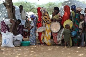 Giải Nobel Hòa bình 2020 ca ngợi những cống hiến chống nạn đói
