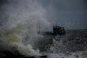 Tàu cá của ngư dân khẩn trương về đất liền