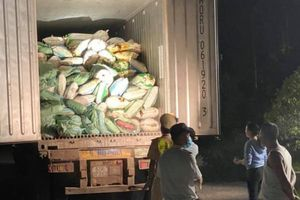 Mở xe tải phát hiện 30 tấn nội tạng động vật bốc mùi hôi thối