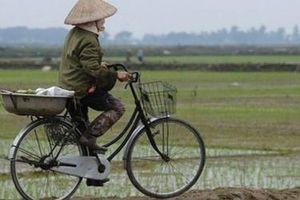 Sớm có quy định khuyến khích tập trung, tích tụ đất đai cho sản xuất nông nghiệp