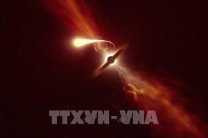 Những hình ảnh đầu tiên về hiện tượng hố đen 'nuốt chửng' một ngôi sao