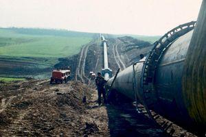 Transneft và Rosneft đền bù bao nhiêu cho Total khi giao dầu nhiễm bẩn?