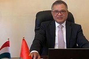 Việt Nam- Đối tác quan trọng trong Chính sách 'Hướng Đông' của Hungary