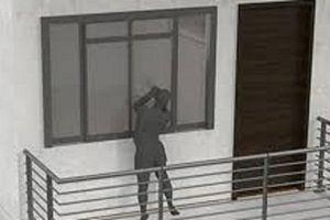 Mang chó thả vào biệt thự, trộm tài sản trị giá hơn 700 triệu