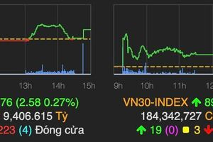 VN-Index tăng nhẹ, SGB giảm 40% phiên chào sàn