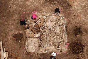 80 bộ hài cốt đầy vàng xuất hiện trong mộ cổ gây chấn động thế giới