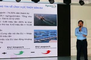 Thúc đẩy xuất khẩu thủy sản sang thị trường EU