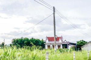 Từng bước di dời lưới điện nông thôn