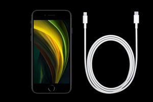Apple 'chơi khó' người dùng với việc cắt phụ kiện iPhone 12