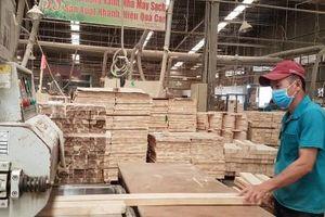 Cảnh báo rủi ro thương mại đối với các sản phẩm ngành gỗ