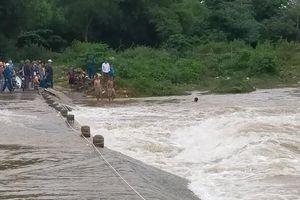 Nghệ An: Người đàn ông bị nước cuốn khi đi mua gạo, hơn trăm người tìm kiếm