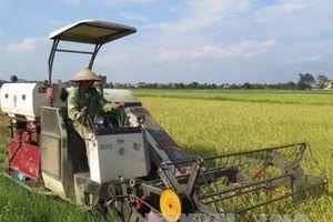 Hải Dương: Cơ giới hóa trong làm đất và thu hoạch đạt trên 90%