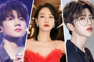 Sự kiện LHP Kim Ưng 'vượt mặt' Thịnh Điển Mùa Thu: Thái Từ Khôn, Vương Nguyên cũng không gánh được rating