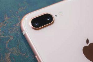 Nhiều dòng iPhone sắp bị 'khai tử' ở Việt Nam, có cả mẫu iPhone quốc dân khiến nhiều người mê mệt