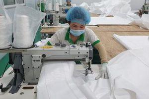 Hàng Việt còn nhiều dư địa xuất khẩu sang Đức