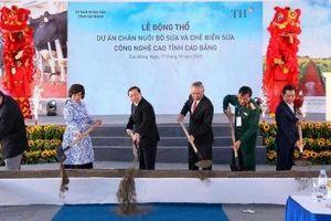 Tập đoàn TH khởi công dự án chăn nuôi bò và chế biến sữa tại Cao Bằng