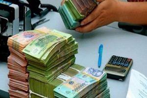 Công ty Hoàng Gia (Hà Nội): Chủ tịch HĐQT hầu tòa vì cùng vợ chiếm đoạt tiền tỷ