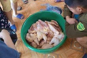 Phụ huynh tố thịt gà ôi thiu đưa vào trường mầm non ở Phú Thọ