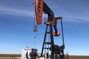'Đại gia' dầu mỏ thế giới cam kết giữ ổn định thị trường năng lượng