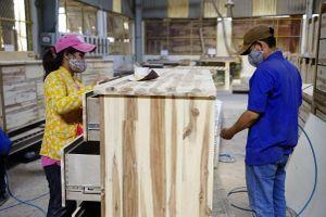 Xuất khẩu gỗ tăng trưởng kỷ lục nhưng ẩn chứa rủi ro 'đầu tư núp bóng'