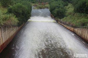 Nghệ An: Hồ Sông Sào xả lũ để đảm bảo an toàn hồ chứa và vùng hạ du