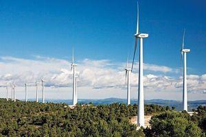 Thêm một dự án điện gió của đại gia Mai Văn Huế xin giảm vốn đầu tư