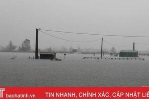 Lộc Hà, Can Lộc, TX Kỳ Anh ngập sâu, nhiều hộ dân đã được sơ tán
