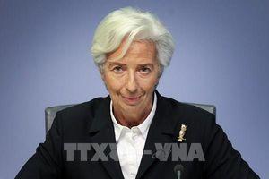 Chủ tịch ECB: Châu Âu cần triển khai ngay gói kích thích kinh tế