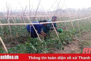 Hiệu quả công tác tuyên truyền miệng ở thị trấn Phong Sơn