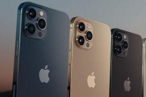 Thu hơn 20 tỷ/ngày từ phân phối điện thoại iPhone, Xiaomi