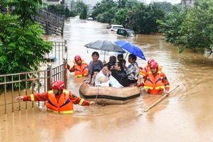 Nguy cơ rất cao xảy ra sạt lở đất vùng núi các tỉnh Hà Tĩnh, Quảng Bình, Quảng Trị, Thừa Thiên Huế