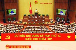 Nội dung dự kiến kỳ họp thứ 10, quốc hội khóa XIV