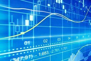 Danh mục cổ phiếu thành phần chỉ số VNX Allshare và VNX50