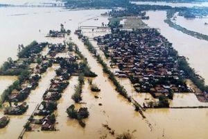 Những mùa bão lụt