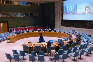 Hội đồng Bảo an: Tình hình Trung Phi còn bất ổn trước thềm tổng tuyển cử