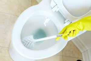 Bạn có làm sạch bồn cầu bằng thuốc tẩy clo? Bạn sẽ không làm nữa sau khi biết điều này!