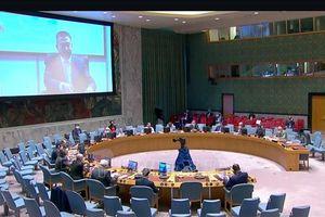 Việt Nam thúc giục các bên tại CHDC Trung Phi tôn trọng các cam kết hòa bình